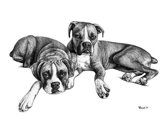 Zoe & Roscoe