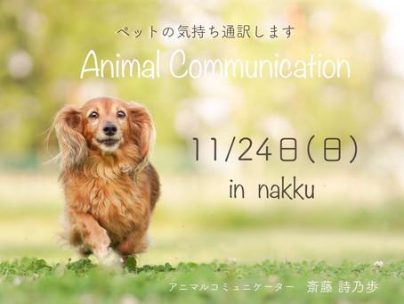 11月24日(日)アニマルコミュニケーション開催