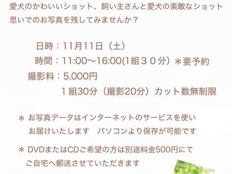 11月11日:nakku garden撮影会のお知らせです