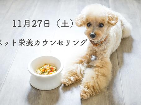 11月27日(土)『ペット栄養カウンセリング』開催