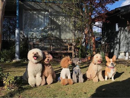 Happy nakku教室開催のお知らせ
