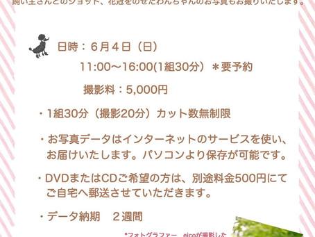 6月4日:nakku Garden と花冠の撮影会 開催