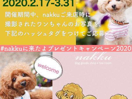 nakku Instagramご来店キャンペーン開催