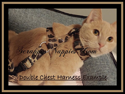 Double Chest Harness.JPG