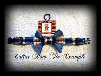 Collar Bowtie.JPG