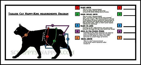 TAILLESS CAT NAPPY-KINS MEASUREMENT DIAGRAM webfit.jpg