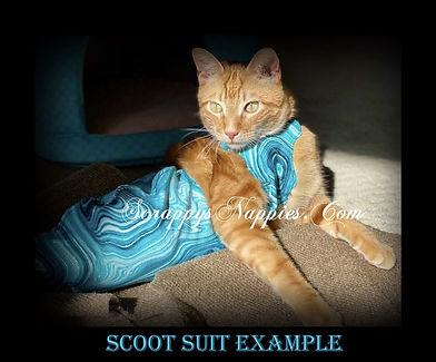 scoot suit.jpg