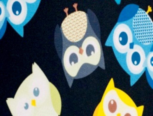 Colorful Owls on Chocolate Brown Print