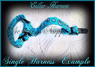 Single Collar Harness Etsy Big.jpg