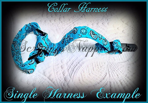 Single Collar Harness Etsy Big.jpg