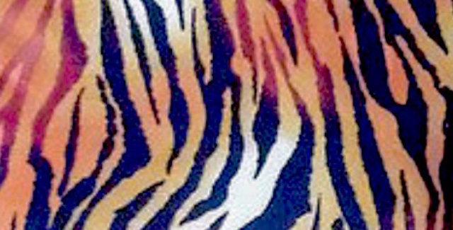 Tawny Tiger Animal Print Fabric Choice