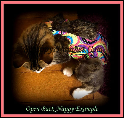 Open Back Cat Nappy Diaper