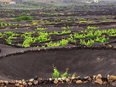 5 unusual places to visit in Lanzarote