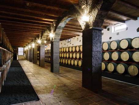 7 wineries to visit in Lanzarote