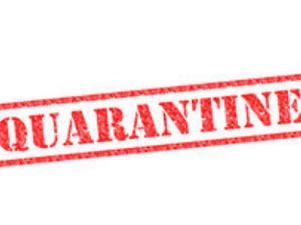 Reduce Quarantine from 14 days to 5 days