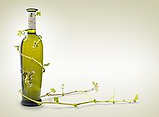 Lanzarote  wine route