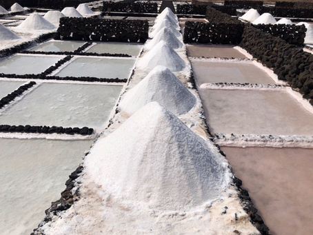 Take a tour of a salt pan