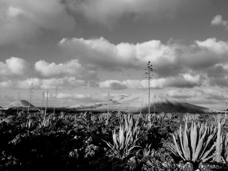 Great photos of Lanzarote
