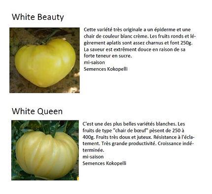 variete tomates 4.JPG