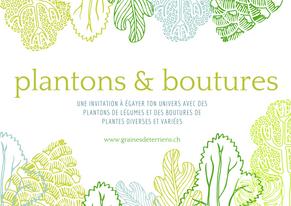 """""""Plantons & boutures"""" : bilan à la sortie du printemps"""