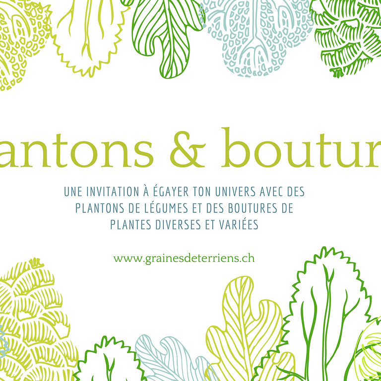 plantons & boutures