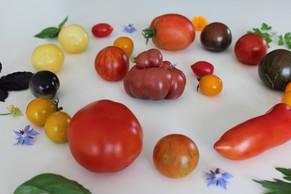 La tomate de la graine à l'assiette :-)