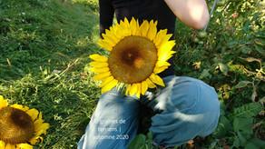 Le jardinage, source d'ancrage et d'émerveillement