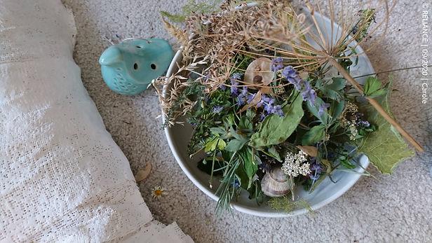 Reliance à la magie des plantes