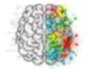 cerveau pixabay.jpg