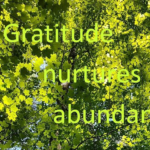 Gratitude nurtures abundance