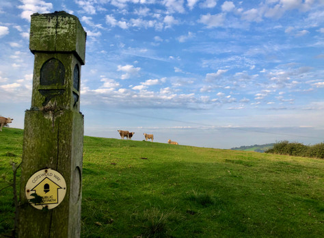 The Cotswold Way - Day 2