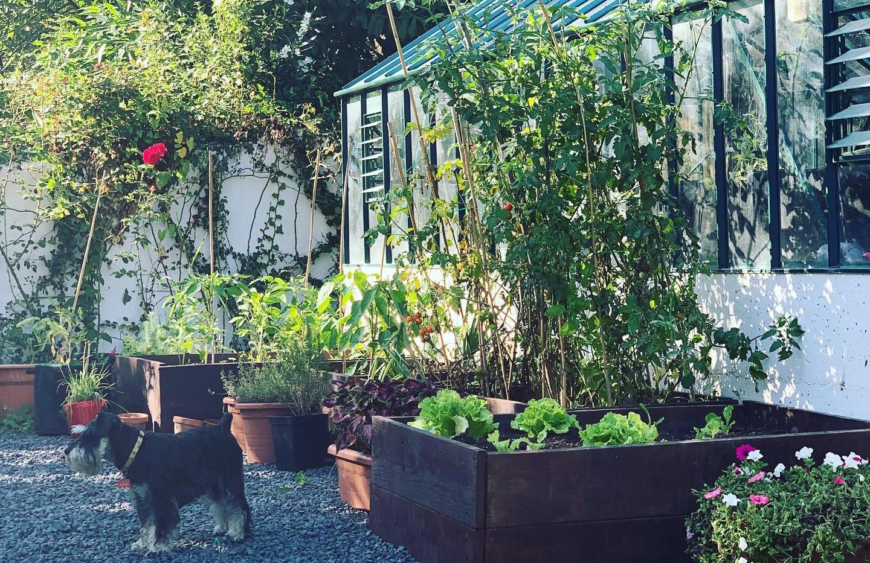nsg greenhouse