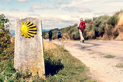 Camino_de_Santiago_Credit_jon_alkain_Shutterstock_CNA