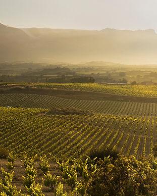 Northern Spain wine regions