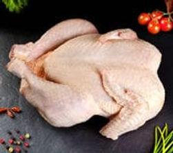 poulet 2.jpg