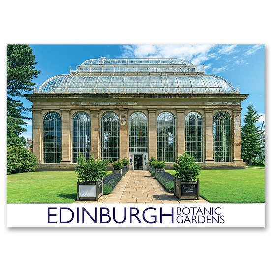 Edinburgh - Entrance to victorian palm house - Sold in pack (100 postcards)