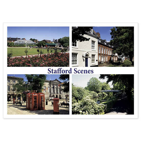Stafford Comp - Sold in pack (100 postcards)