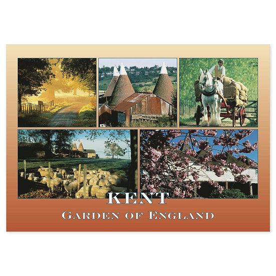 Kent Garden of England - Sold in pack (100 postcards)