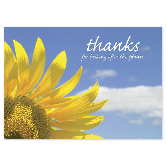 Thank You - Flower - Sold in pack (100 postcards)
