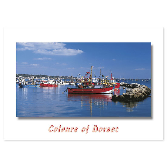 Poole, Dorset Just - Sold in pack (100 postcards)