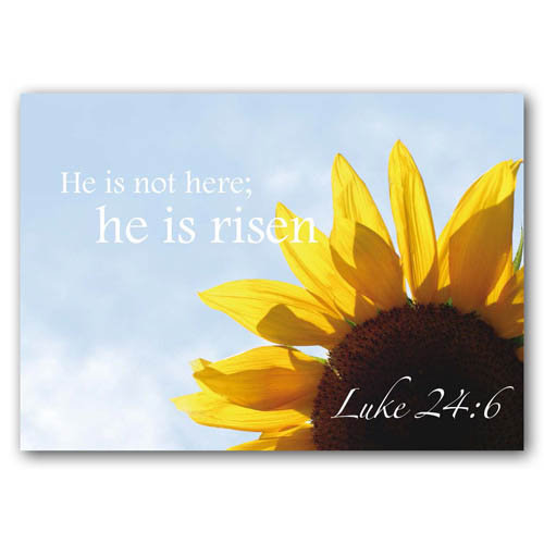 Bible Verse He Is Not Here - Sold in pack (100 postcards)