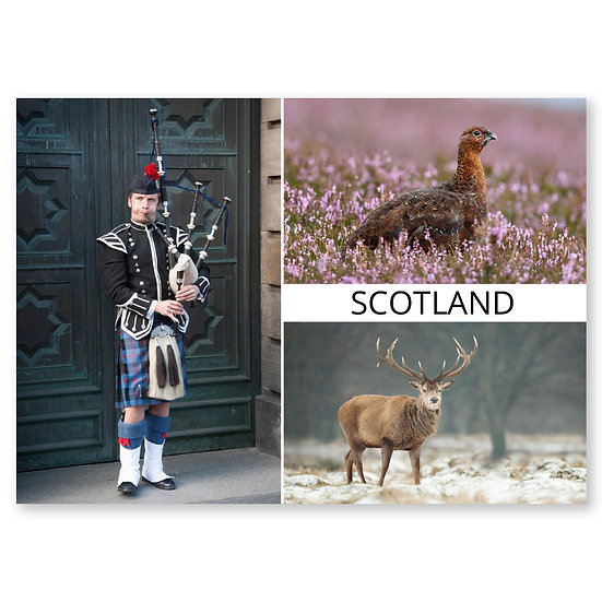Highland Scenes 3 Composite - Sold in pack (100 postcards)