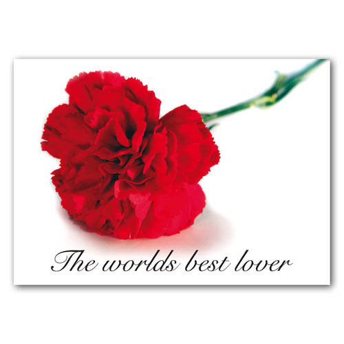 Statement - The Worlds Best Lover - Sold in pack (100 postcards)