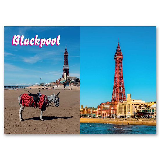 Blackpool, Donkey ride next to Blackpool Tower - Sold in pack (100 postcards)