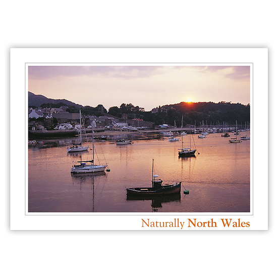 Conwy Harbour North Wales Naturally - Sold in pack (100 postcards)