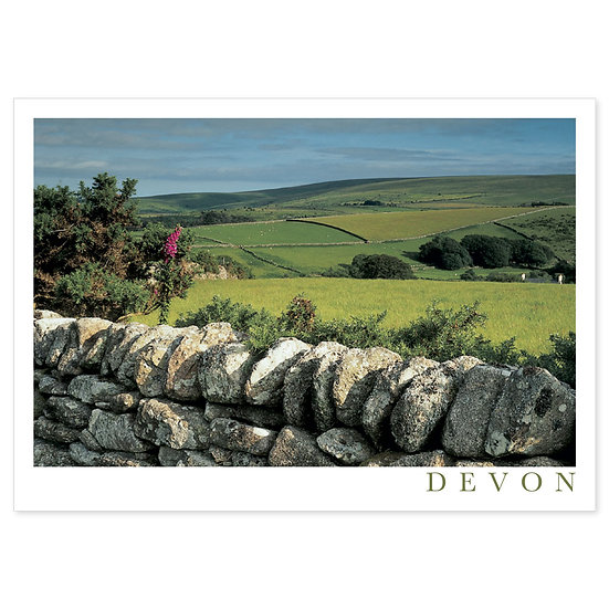 Devon Down In Country - Sold in pack (100 postcards)
