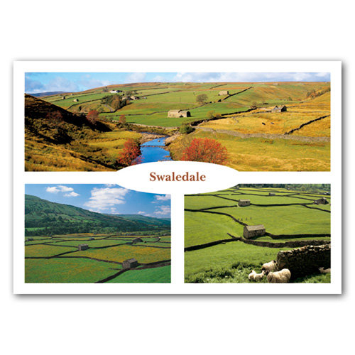Swaledale 3 View Comp - Sold in pack (100 postcards)