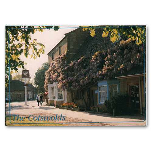 Broadway Wysteria - Sold in pack (100 postcards)