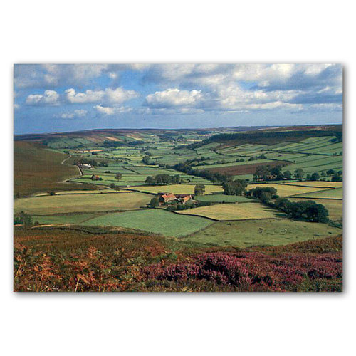 North York Moors Little Fryup - Sold in pack (100 postcards)