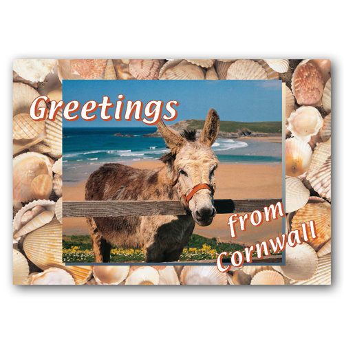 Cornwall Greetings From - Sold in pack (100 postcards)